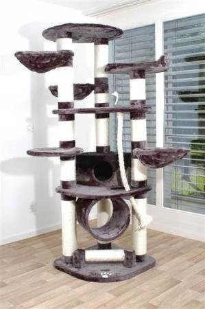 arbre a chat grande taille
