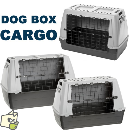 cage transport voiture chien