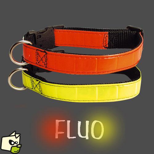 collier fluo chien