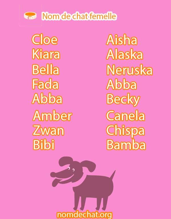 nom de chat femelle