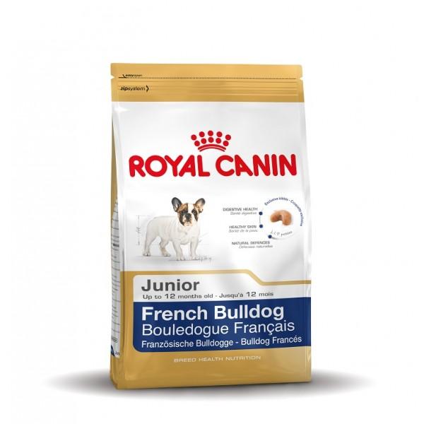royal canin bouledogue français junior