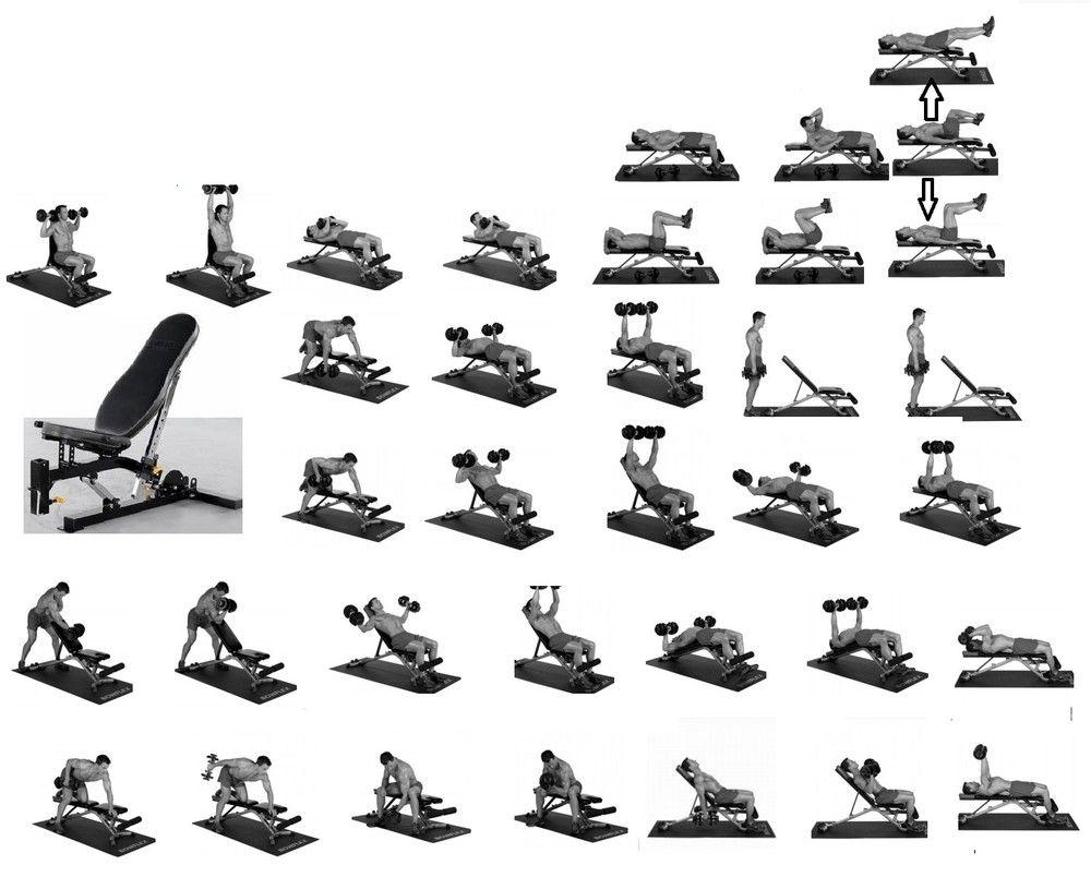 Meilleur Exercice Avec Banc De Musculation Le Test Et